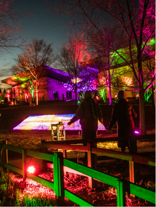 image of family looking out at field of colorful lights